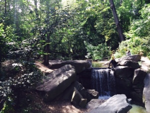 The Ravine in Central Parks North Woods